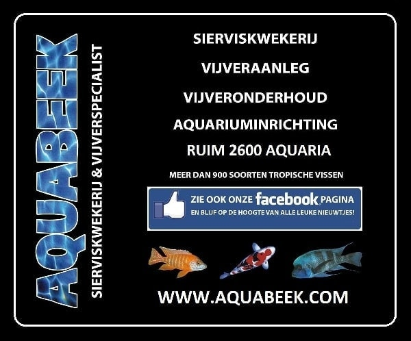 Aquabeek